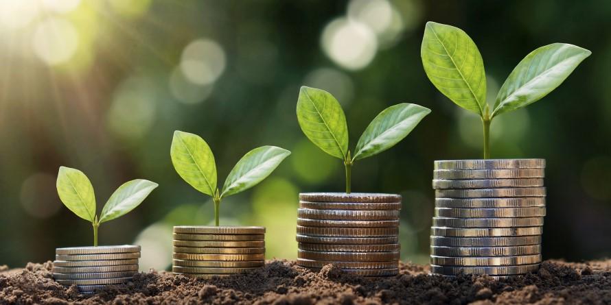 Los fondos de inversión nacionales acumulan rentabilidad positiva en 2019